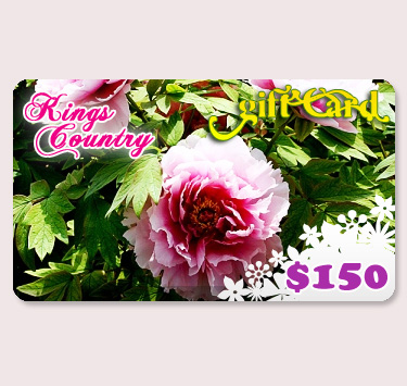 $150.00 Kings County Nurseries Gift Certificate